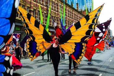 Giant Butterfly Hire